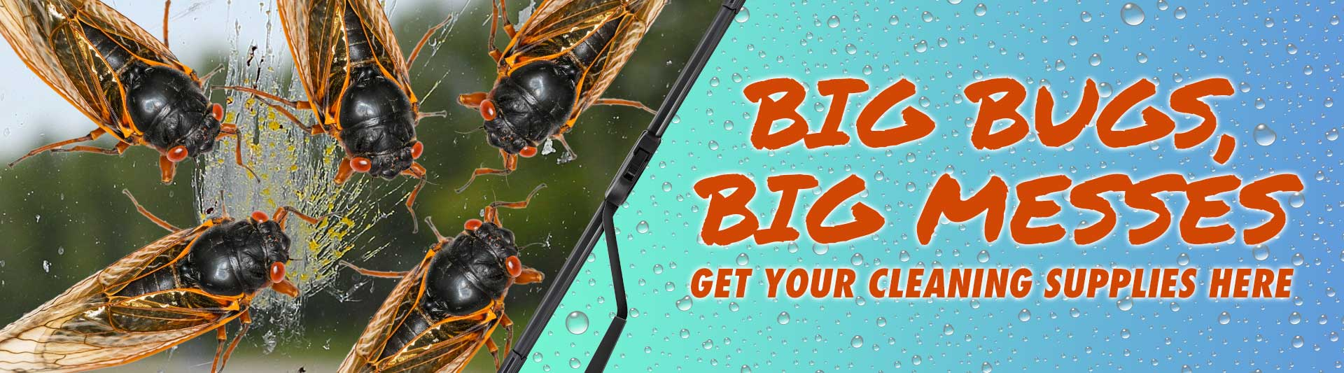 Big Bugs, Big Messes. Get your cleaning supplies here
